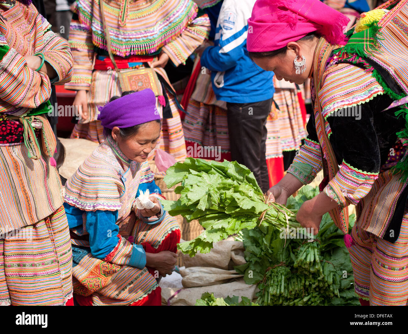 A Hmong woman buys vegetable greens at the Bac Ha Sunday morning market in Bac Ha, Lao Cai, Vietnam. - Stock Image