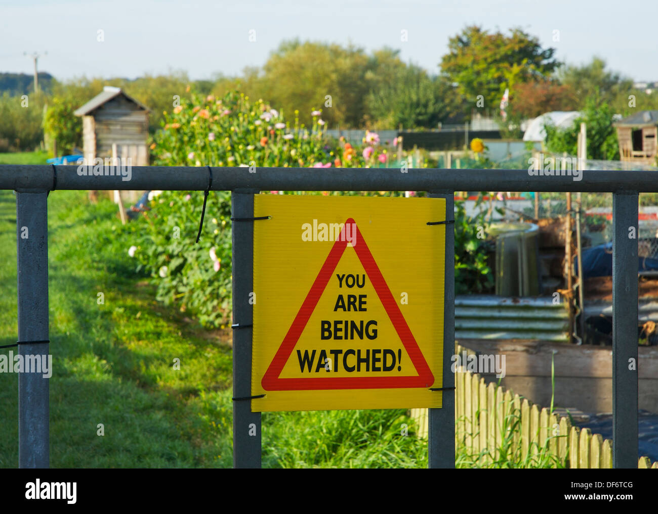 Sign - You Are Being Watched - on gate of allotment, Ulverston, Cumbria, England UK - Stock Image