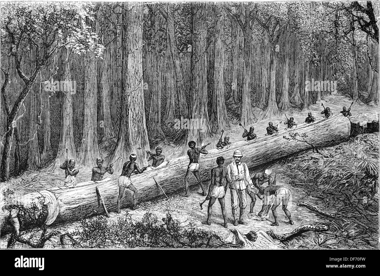 Africa. Stanley Expedition. Cutting Out teh New 'Livingstone Canoe'. Engraving by Com. 'La Ilustracion Nacional', 1871. - Stock Image