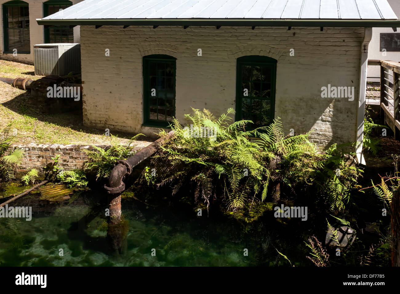 Artesian spring basin at the Boulware Springs Water Works,  the original Gainesville water plant, was first tapped in 1898. - Stock Image