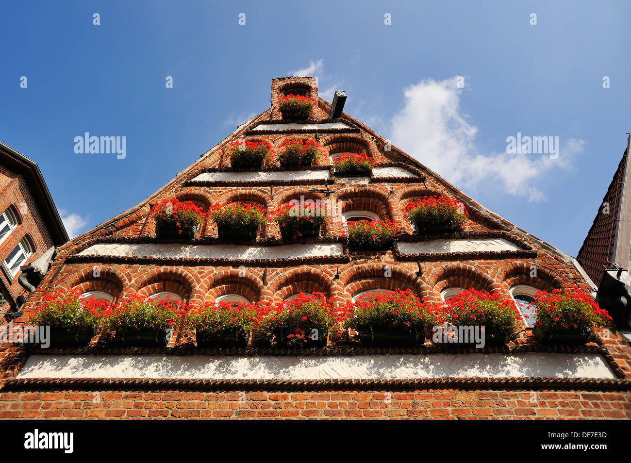 Renaissance pediment with geraniums, Lüneburg, Lower Saxony, Germany - Stock Image