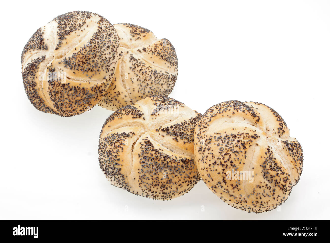 Close up of poppyseed bread rolls on a white background - Stock Image