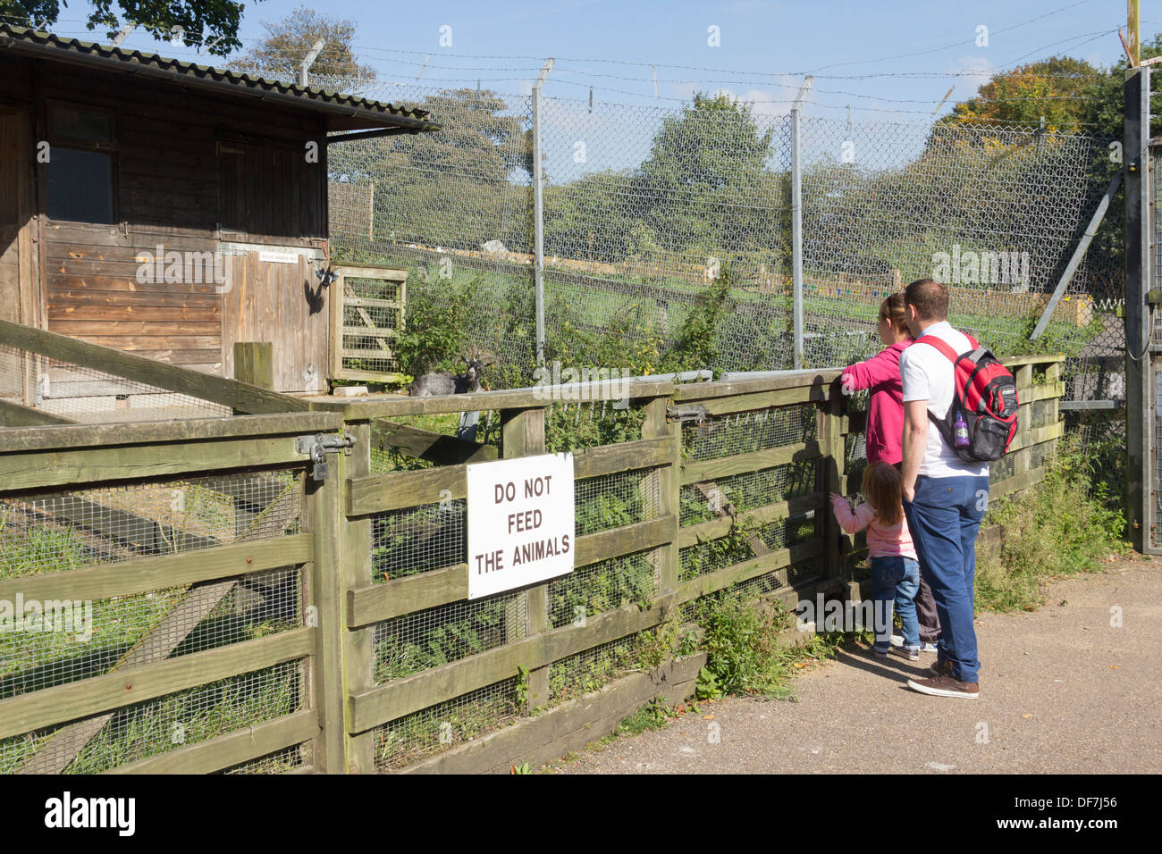 Young family viewing a pygmy goat at the Animal World attraction at Moss Bank Park, Bolton, on its final weekend Stock Photo
