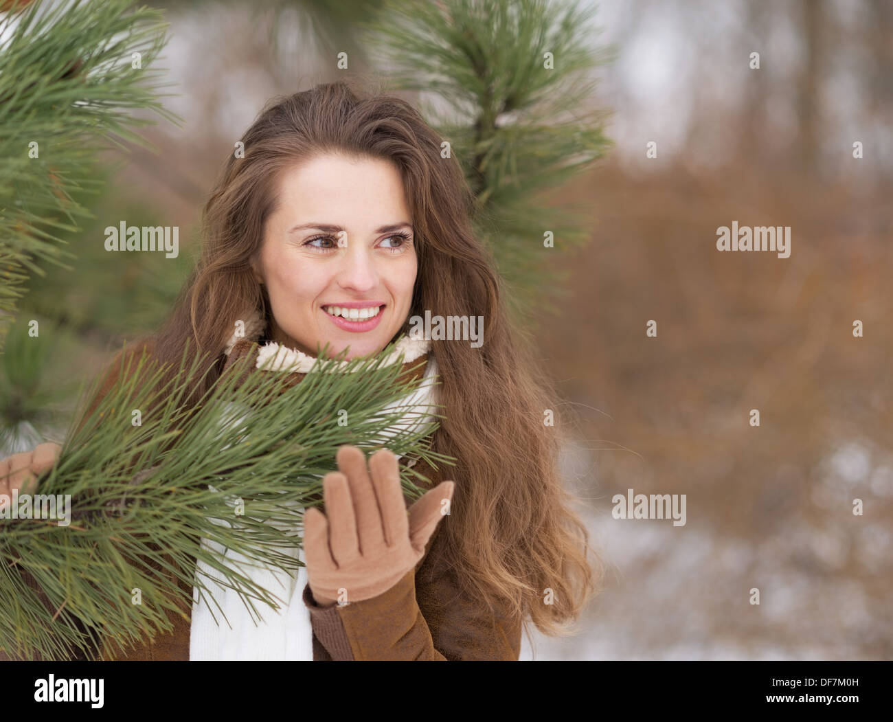 woman with fir tree stock photos woman with fir tree stock images