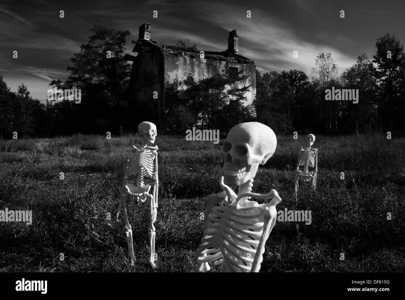 Walking skeletons - Stock Image