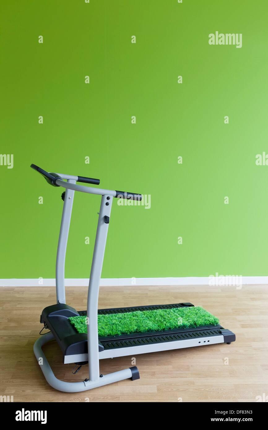 carpet grass on the treadmill