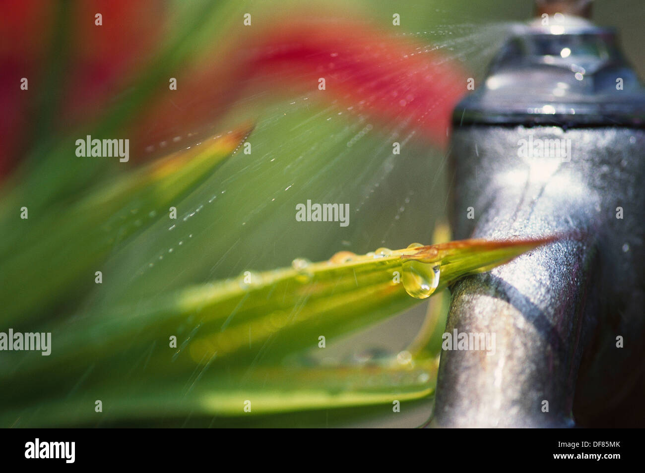 Leaking Outdoor Tap Stock Photos & Leaking Outdoor Tap Stock Images ...
