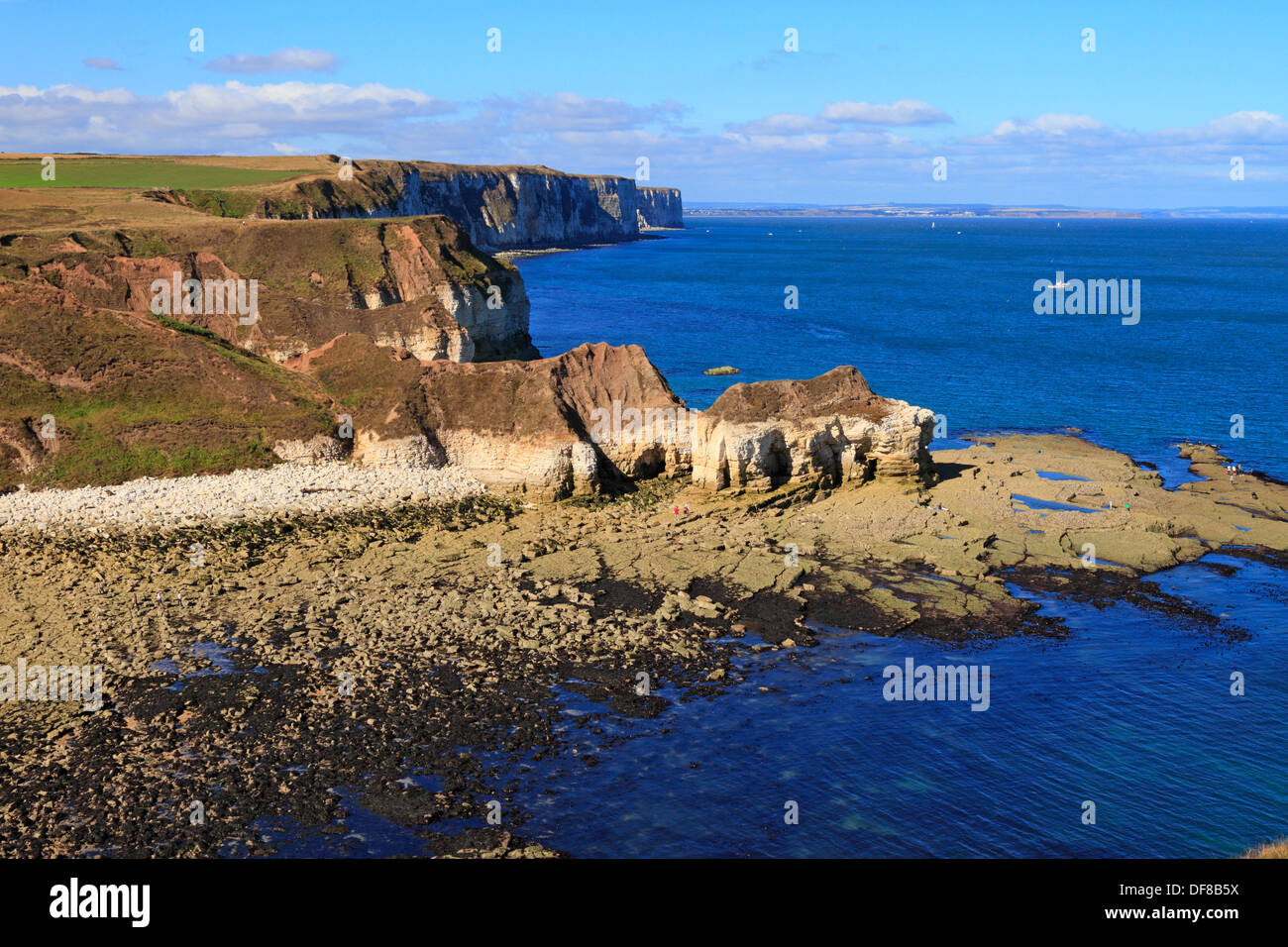 Thornwick Bay and distant Bempton Cliffs, Flamborough Head, East Yorkshire, England, UK. Stock Photo