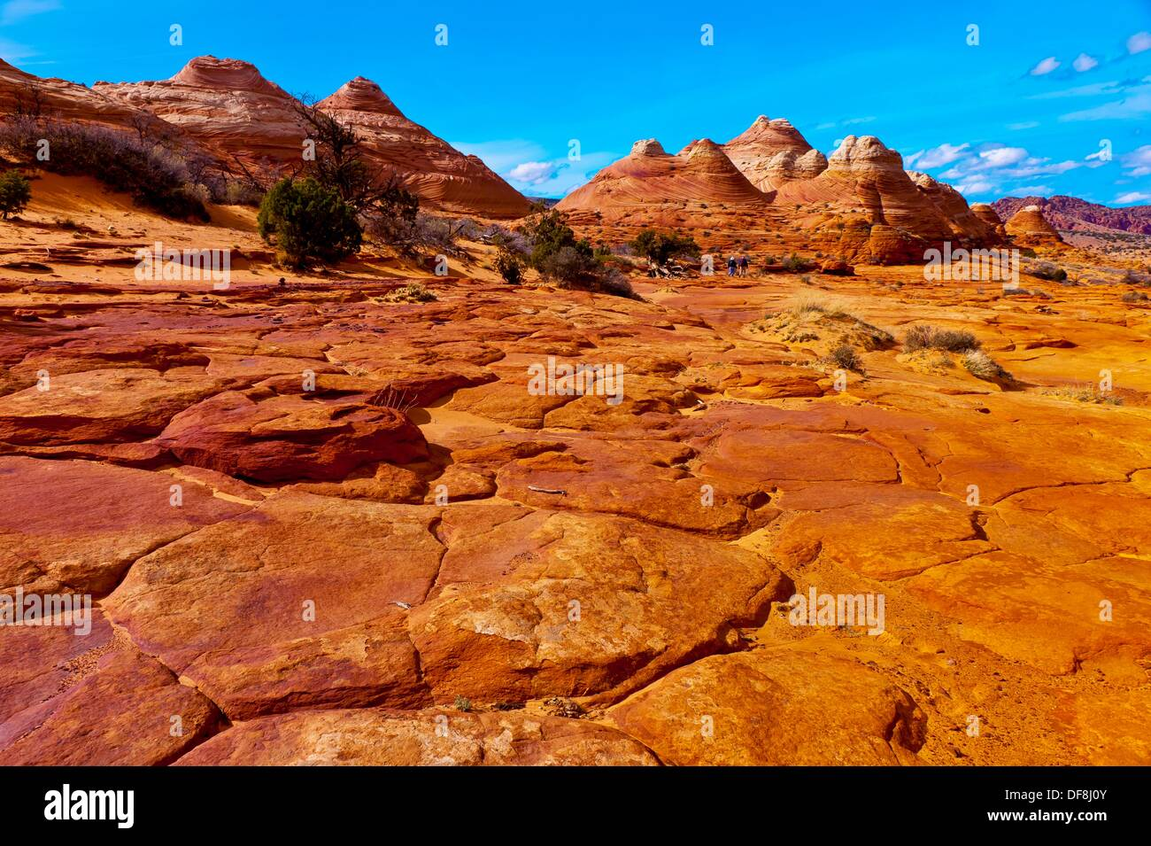 Hiking in the sandstone rock formations of Coyote Buttes North, Paria Canyon-Vermillion Cliffs Wilderness Area, Stock Photo