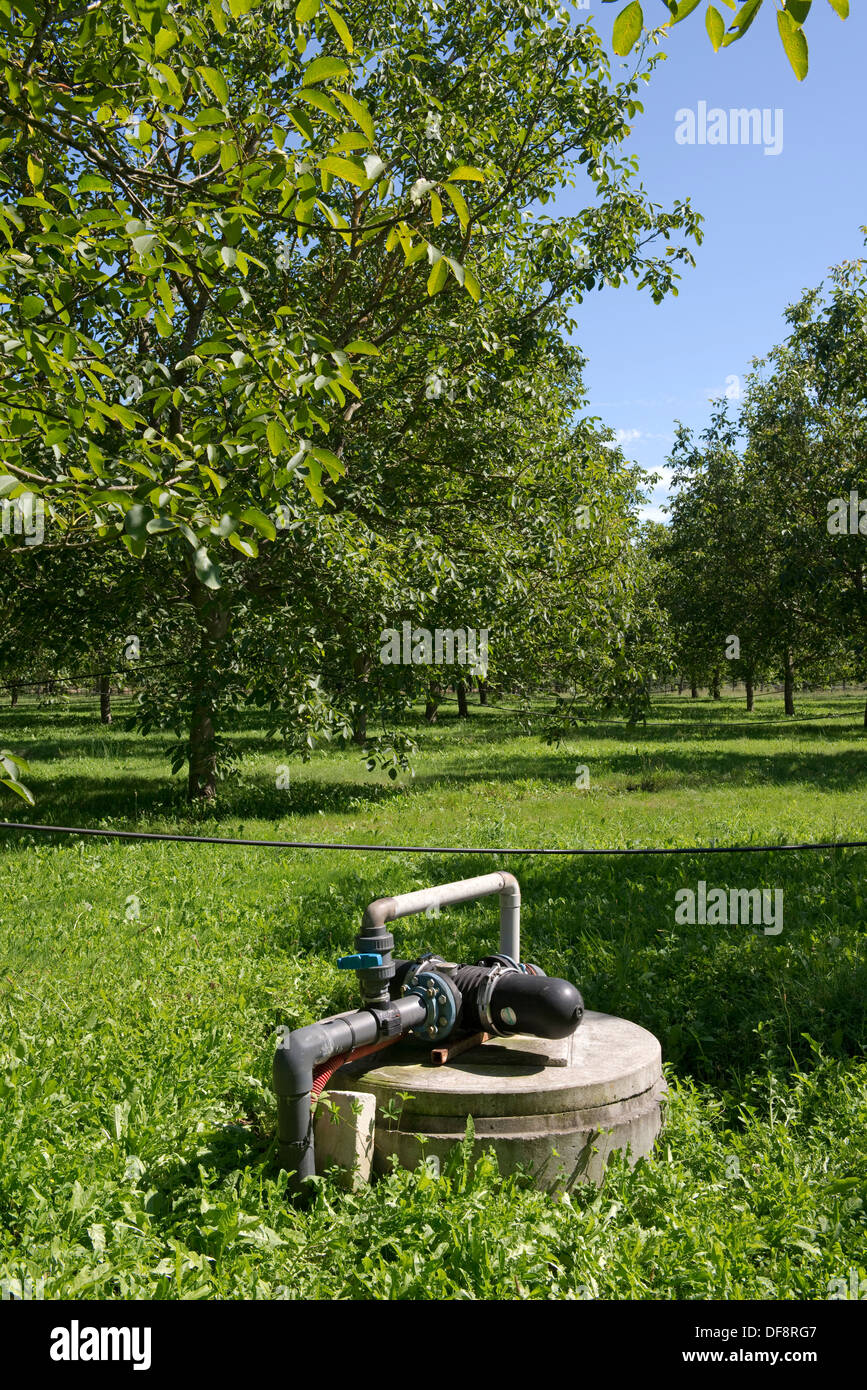 Irrigation and fertigation pump for walnut trees in a walnut orchard at Sainte-Foy-la-Grande, France - Stock Image
