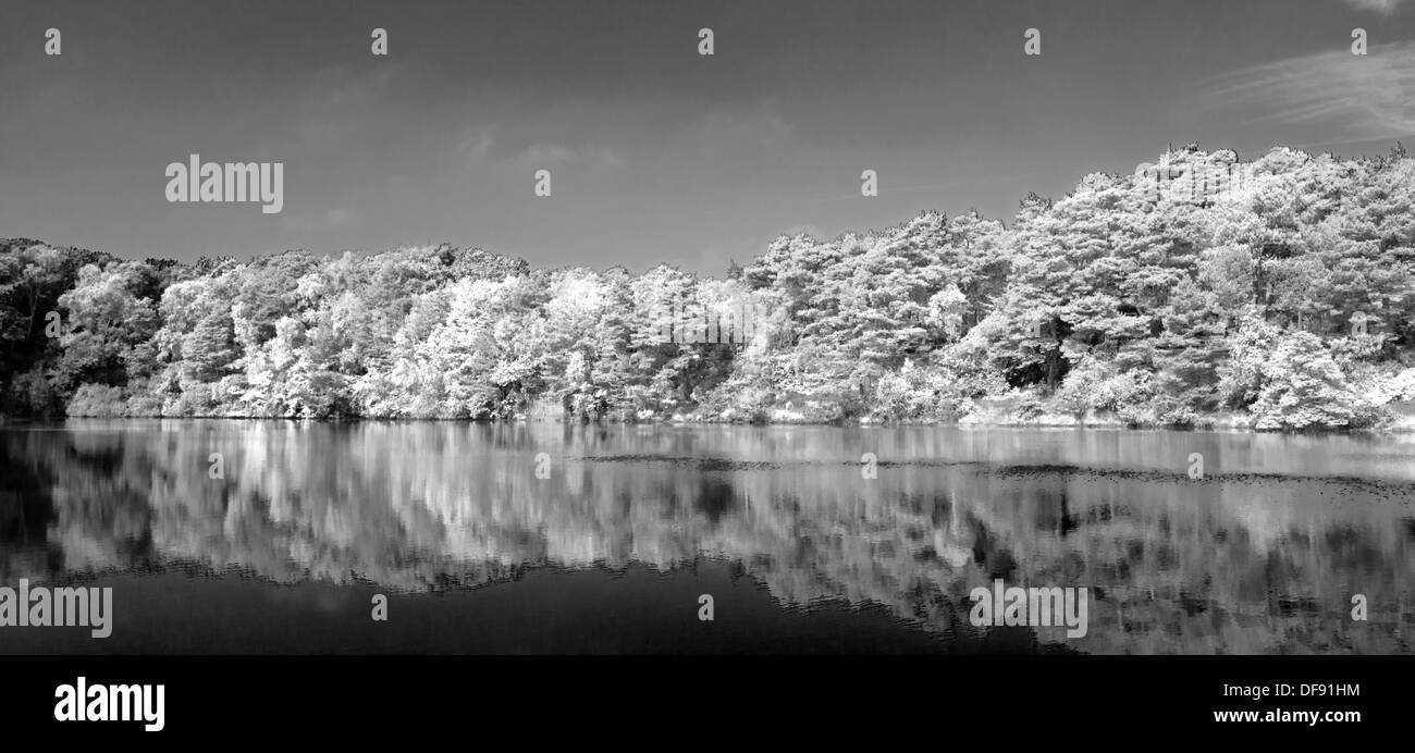 A panoramic  Landscape  view of the Blue Pool at  Furzebrook, near Wareham, Dorset, England, Uk.( Black and white) - Stock Image