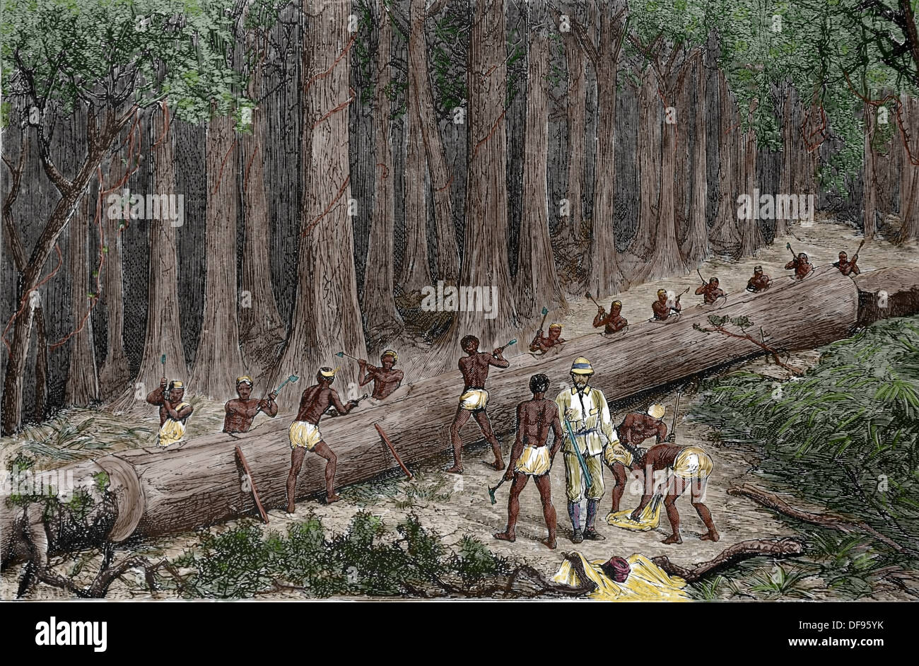 """Africa. Stanley Expedition. Cutting Out the New """"Livingstone Canoe"""". Colored engraving. Stock Photo"""