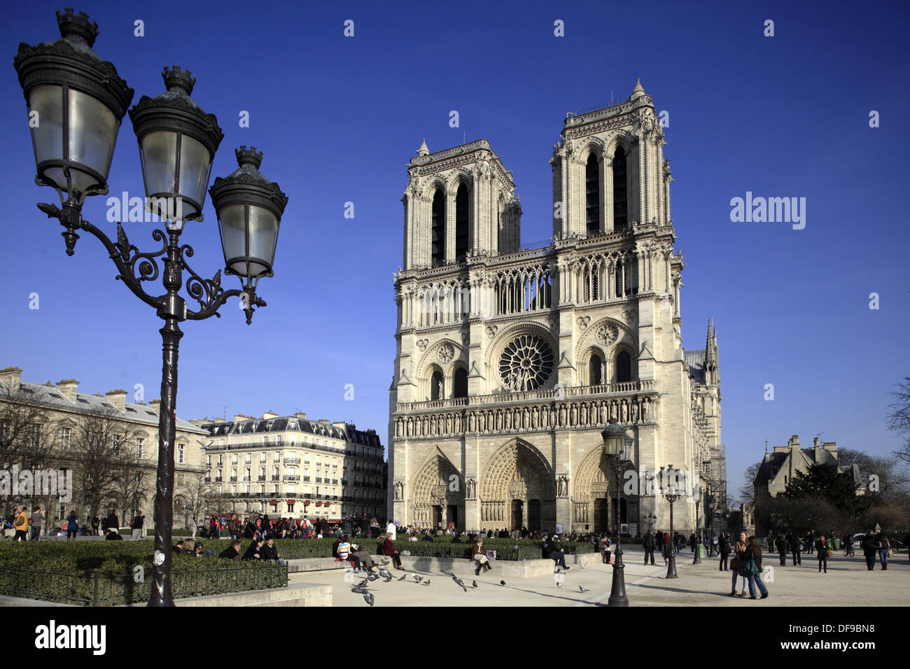 A lamp post on Place du parvis notre dame with Notre Dame Cathedral in the background  Paris  France. Stock Photo