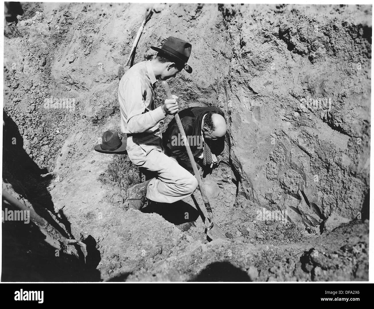 Unearthing dinosaur bones. Cornhusker Ordnance Plant, Nebraska. 292132 - Stock Image