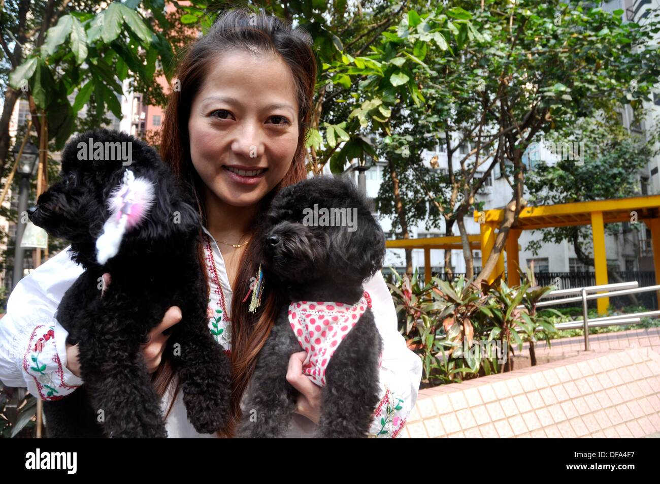 Hong Kong: a woman and her fancy poodles, Sheung Wan - Stock Image