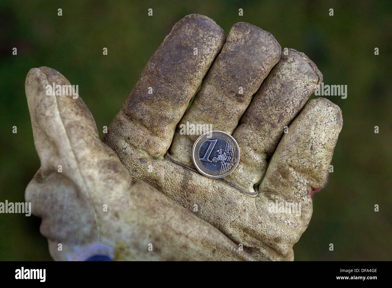 A hand in a work glove is holding a one-euro coin (05 December 2006). Photo: Karl-Josef Hildenbrand dpa/lby +++(c) Stock Photo