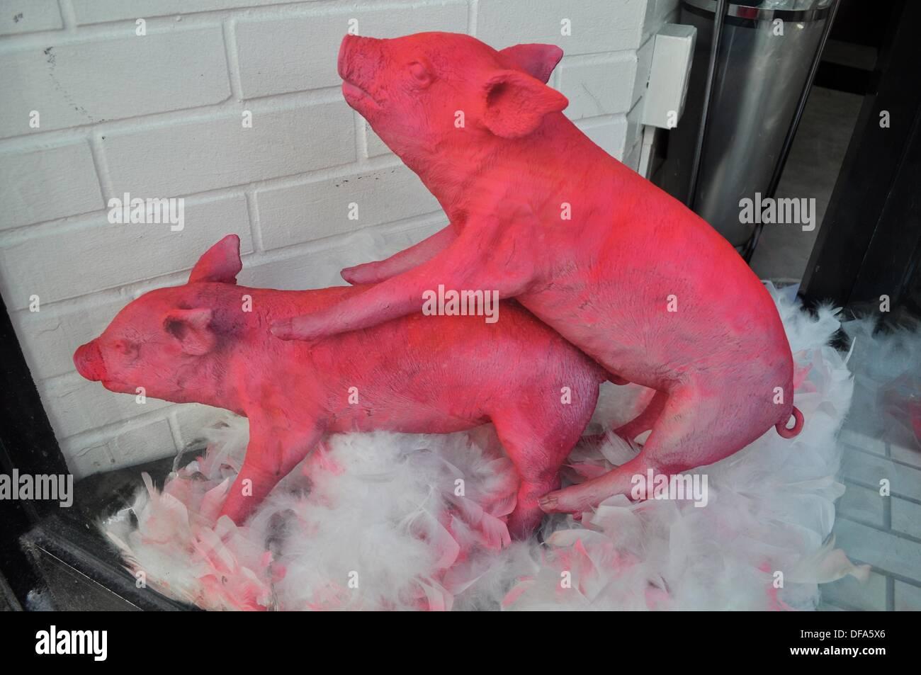Japanese pig sex