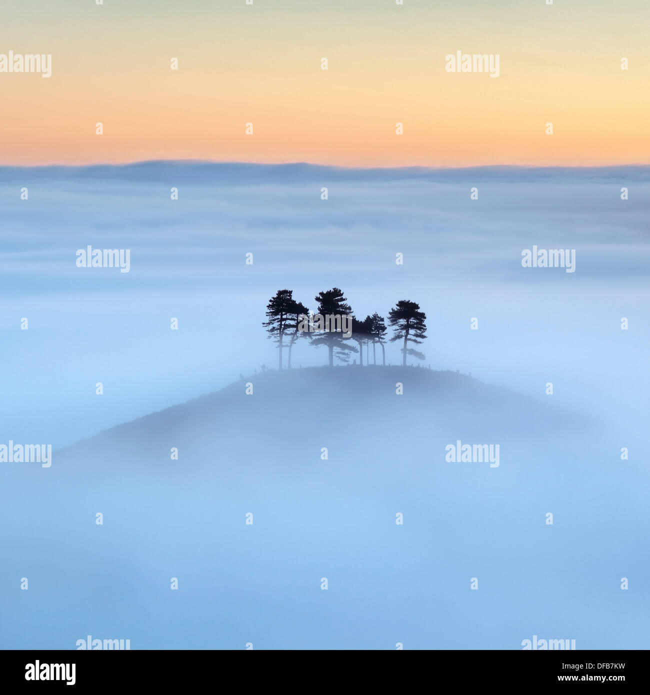 Colmer's Hill in Dorset, UK, surrounded by mist in autumn before sunrise. - Stock Image