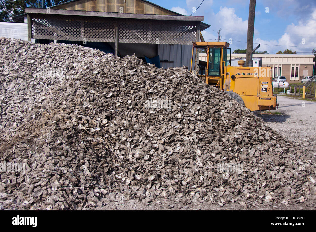 Oyster shells at a processing plant in Apalachicola, Florida - Stock Image