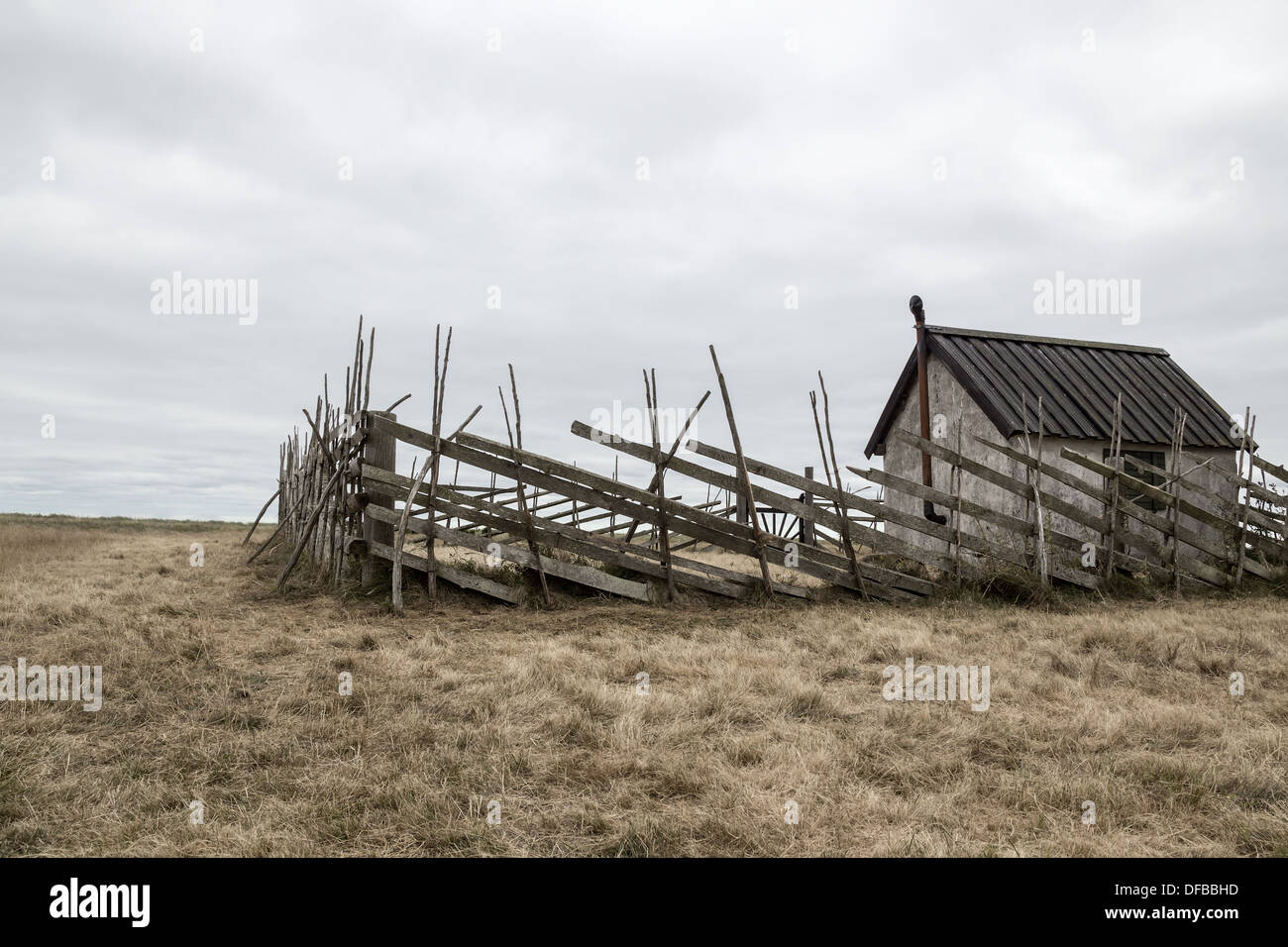 Old farmhouse in the field. Island of Gotland, Sweden. - Stock Image