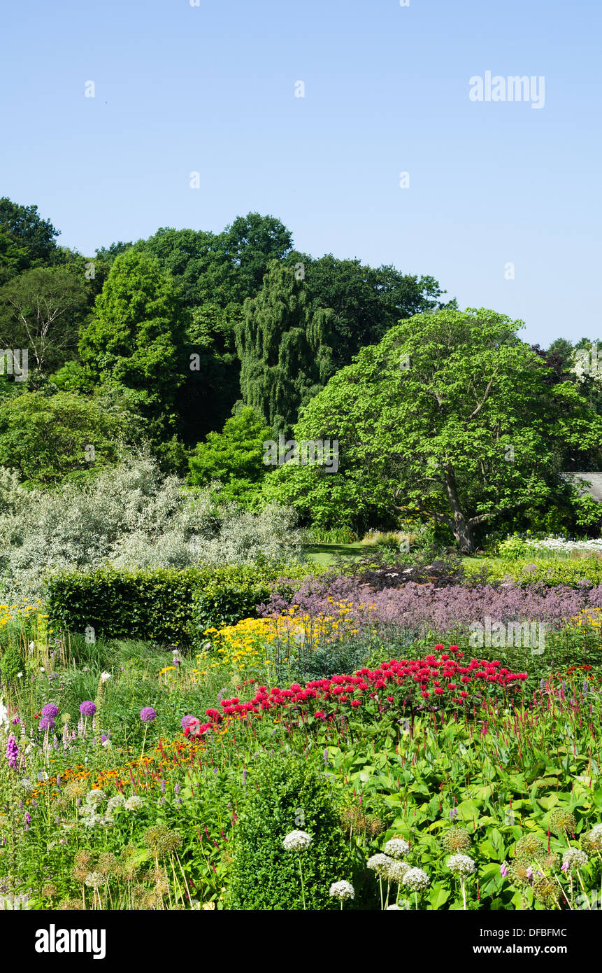 Herbaceous border with red bergamot and trees beyond - Stock Image