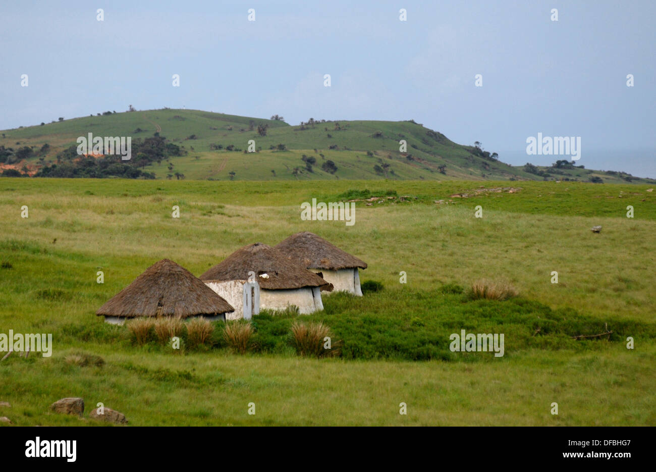 A homestead in a remote part of Pondoland in the Transkei, 24 January 2008. Picture Rogan Ward.. - Stock Image