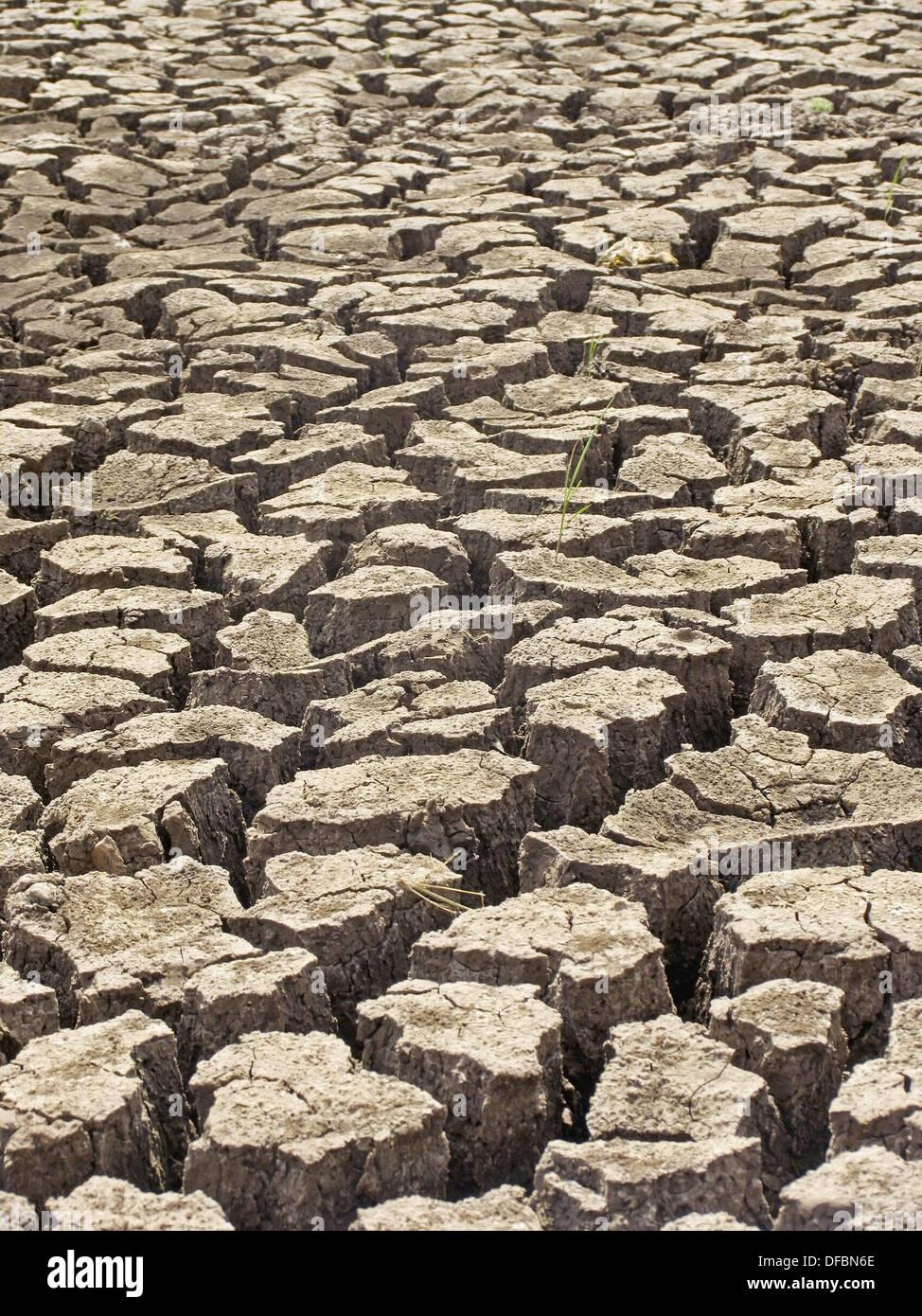 Arid, Parched, cracked land in a village  Maharashtra, India - Stock Image