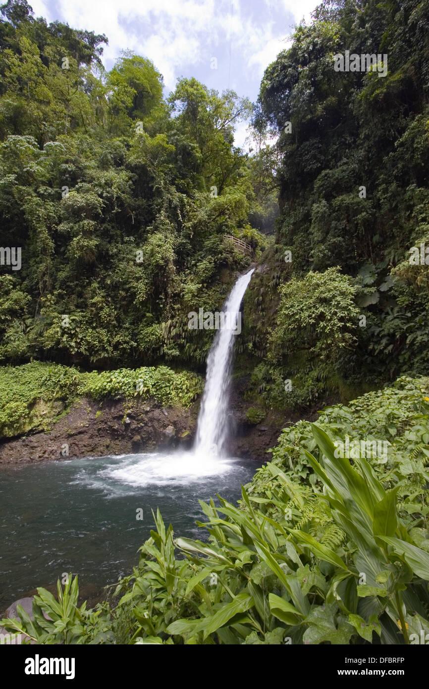 La Paz Waterfall Gardens Tour Garden Ftempo