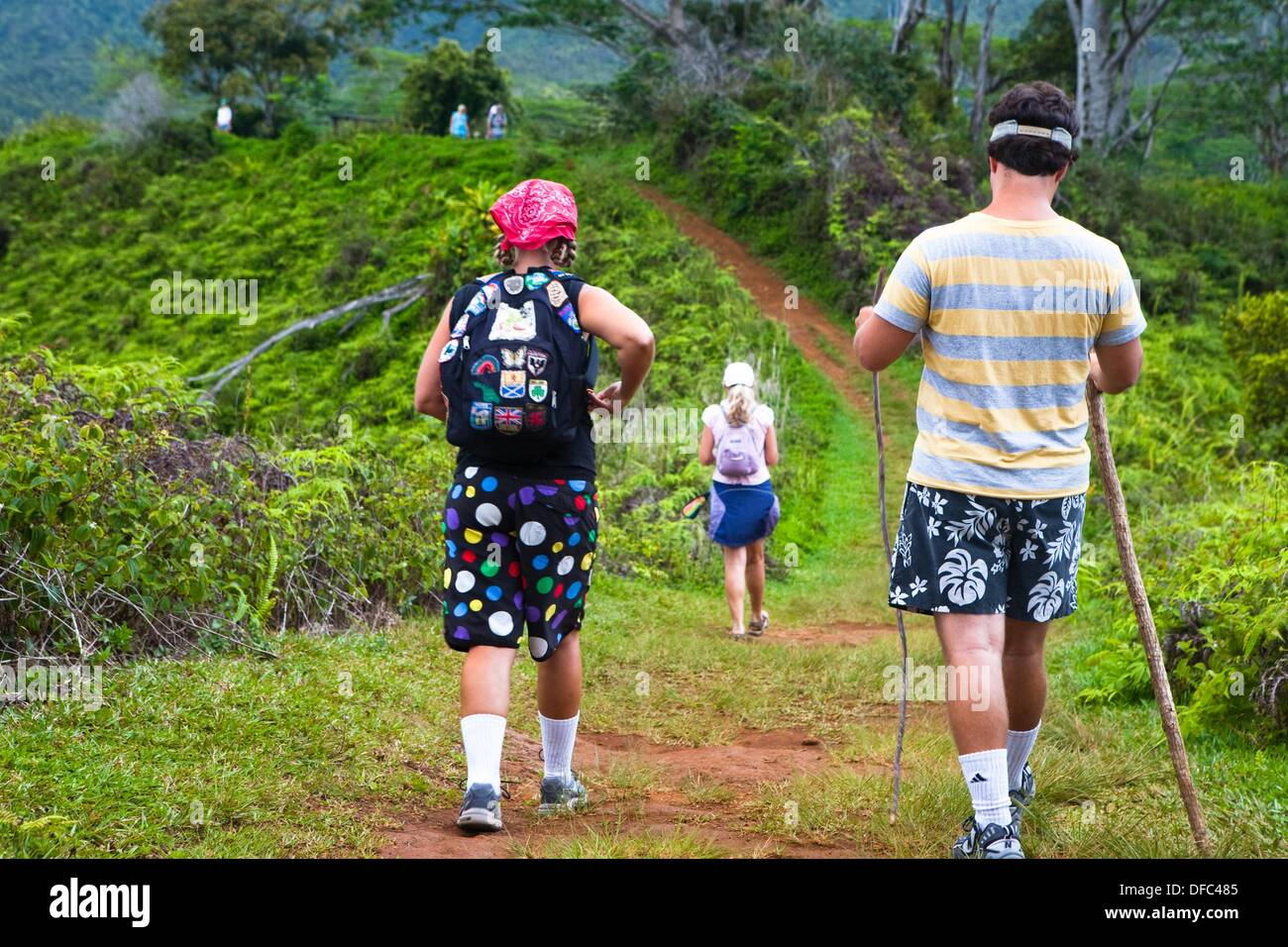The Kuilau and Moalepe trail begin near Wailua´s Keahua Arboretum and travels up to views of Mt. Waialeale and the ocean, - Stock Image
