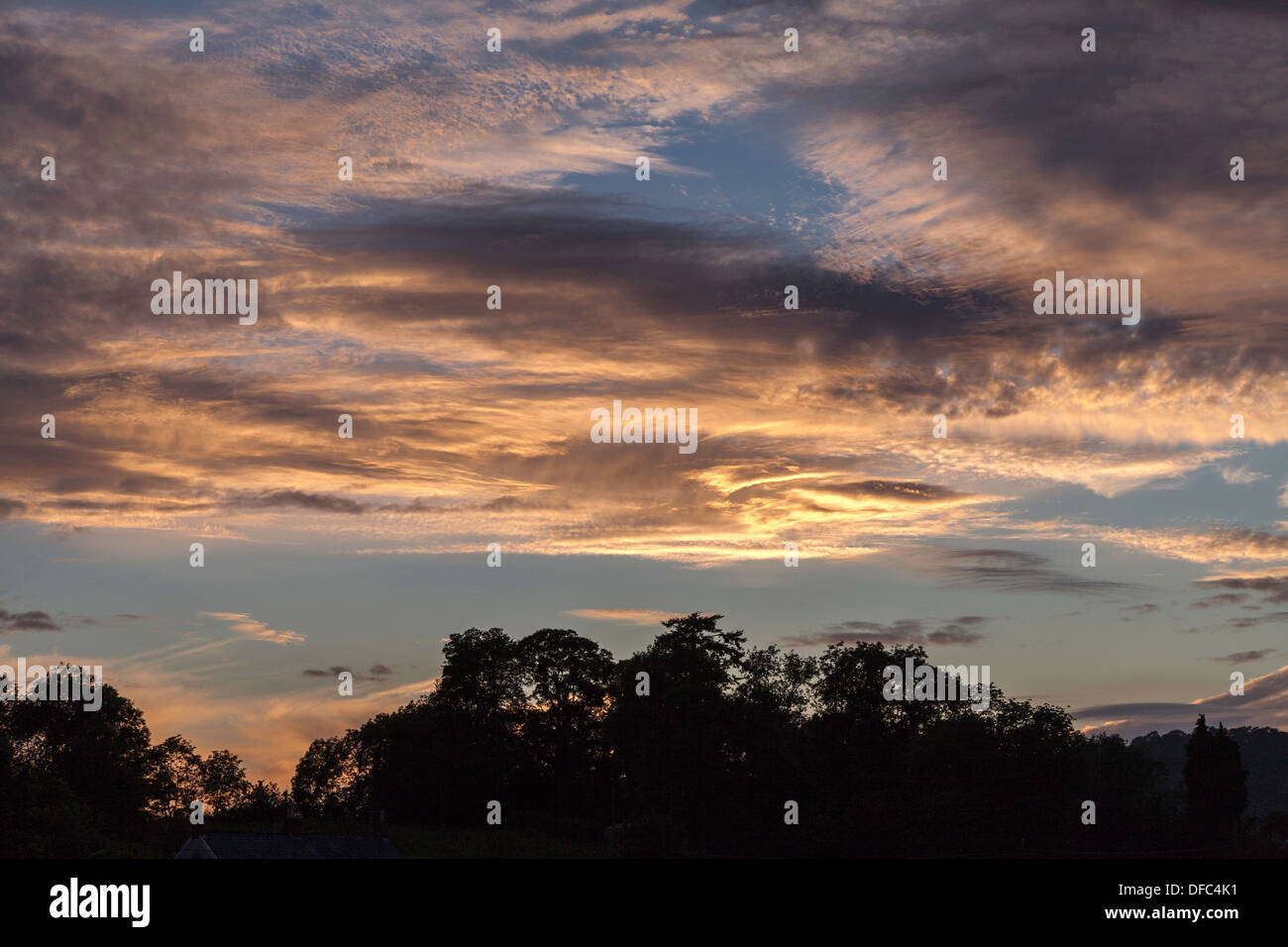 EVENING SKY WITH DRAMATIC CLOUDS UK . Trees silhouetted against sky. - Stock Image
