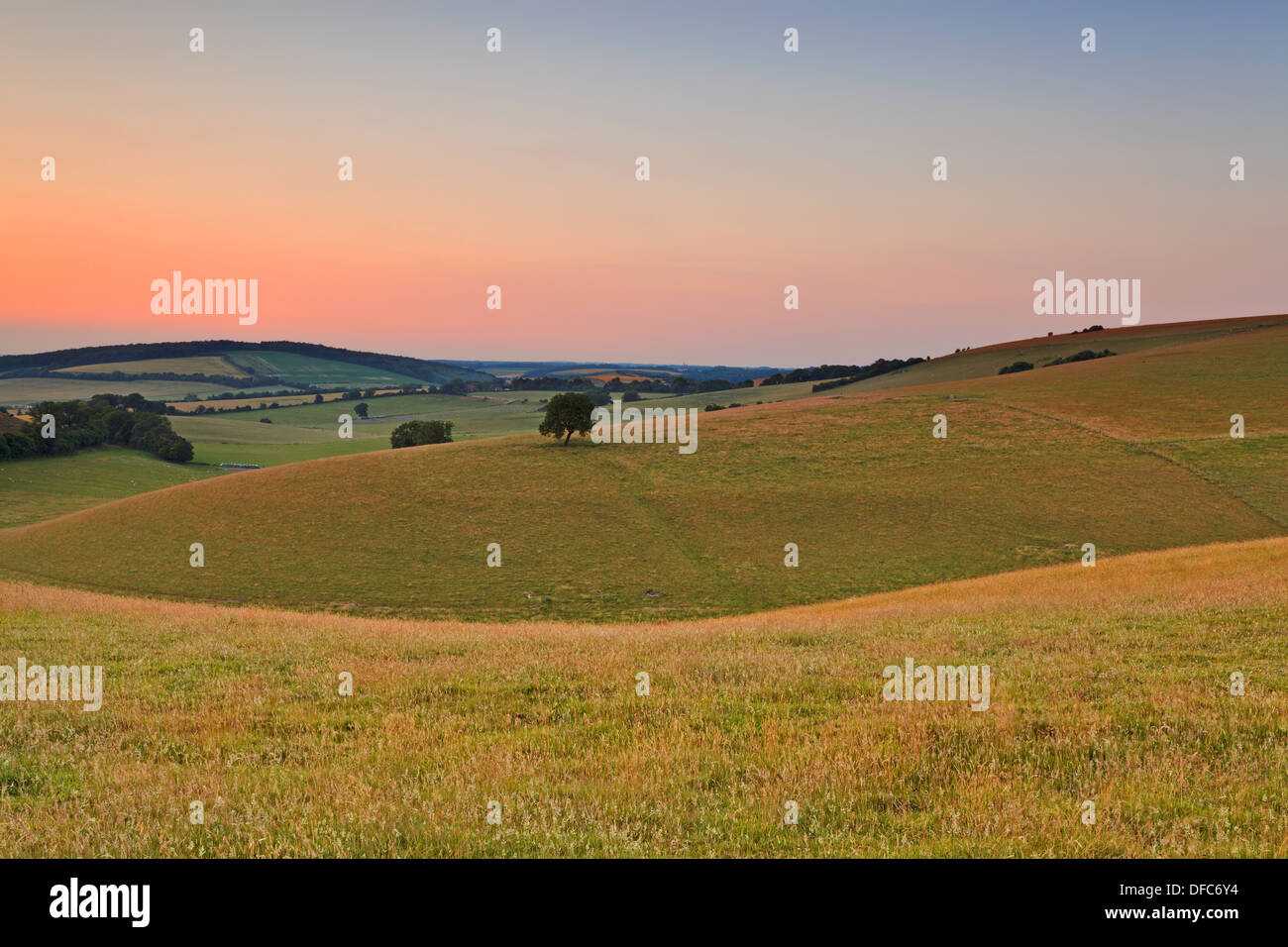 Dusk on a July evening looking across the South Downs in Hampshire. - Stock Image