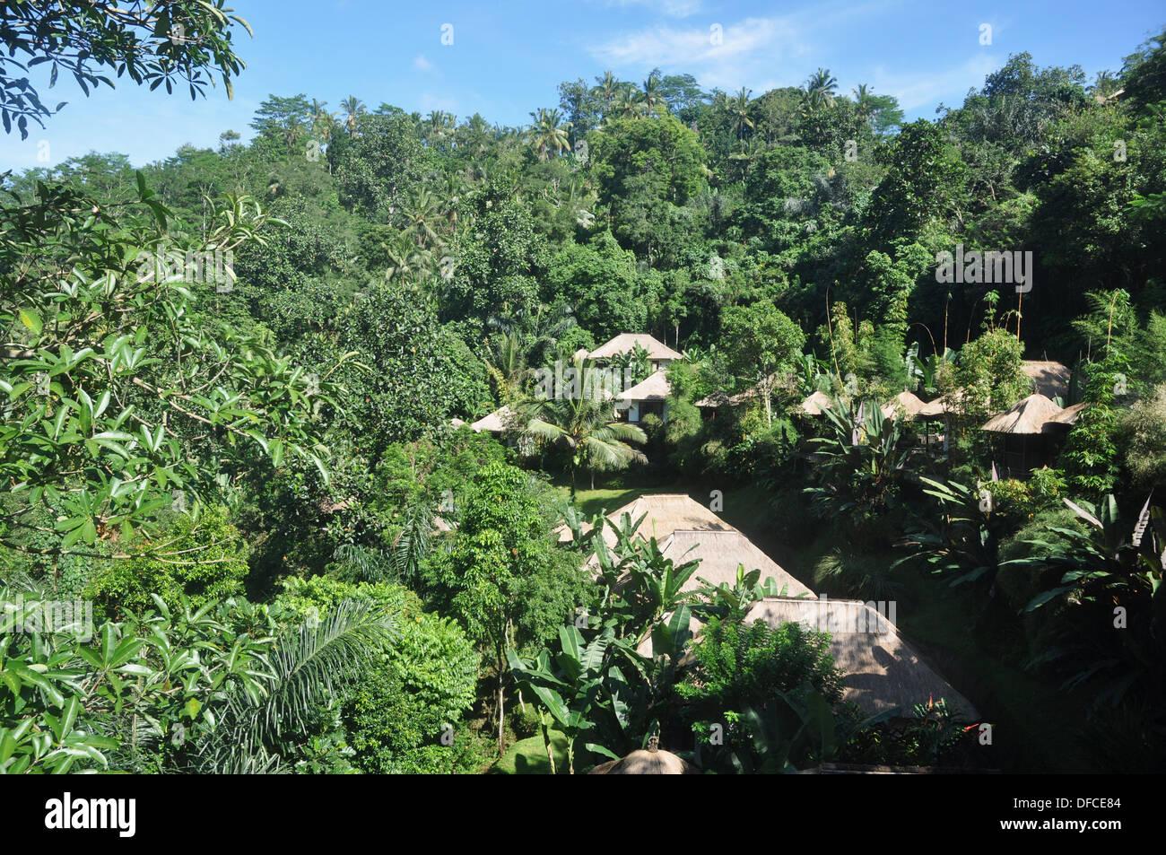 near Ubud (Bali, Indonesia): the Ubud Hanging Gardens Hotel - Stock Image