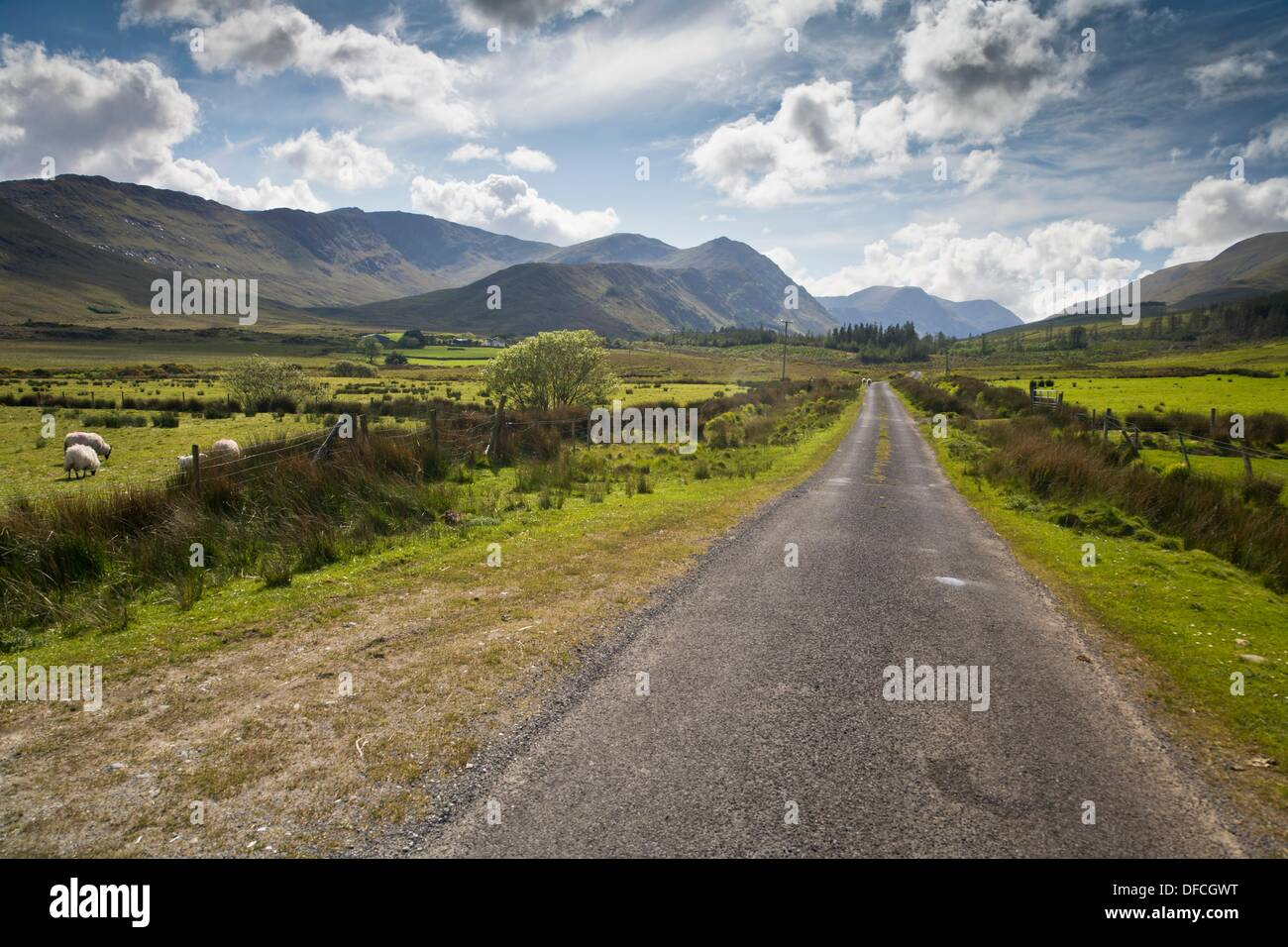 Narrow road in Connemara, County Mayo, Ireland, Europe - Stock Image