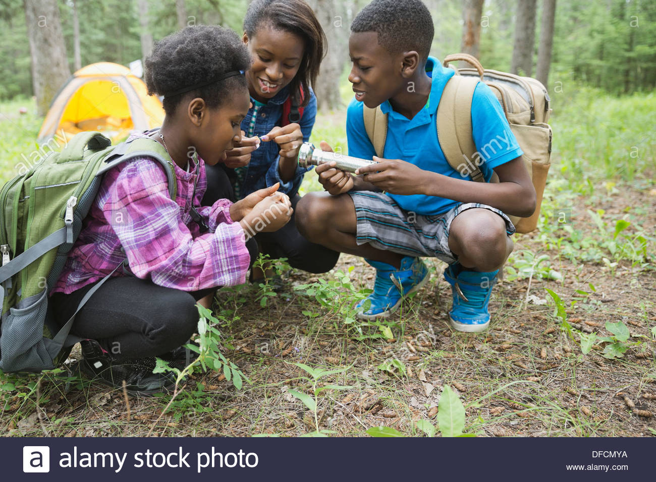 Siblings exploring forest together - Stock Image