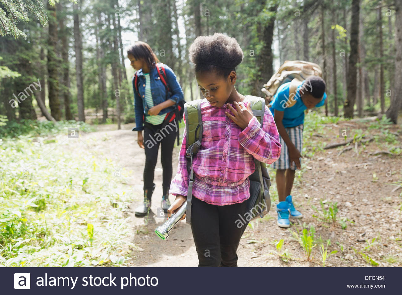 Three siblings exploring forest - Stock Image