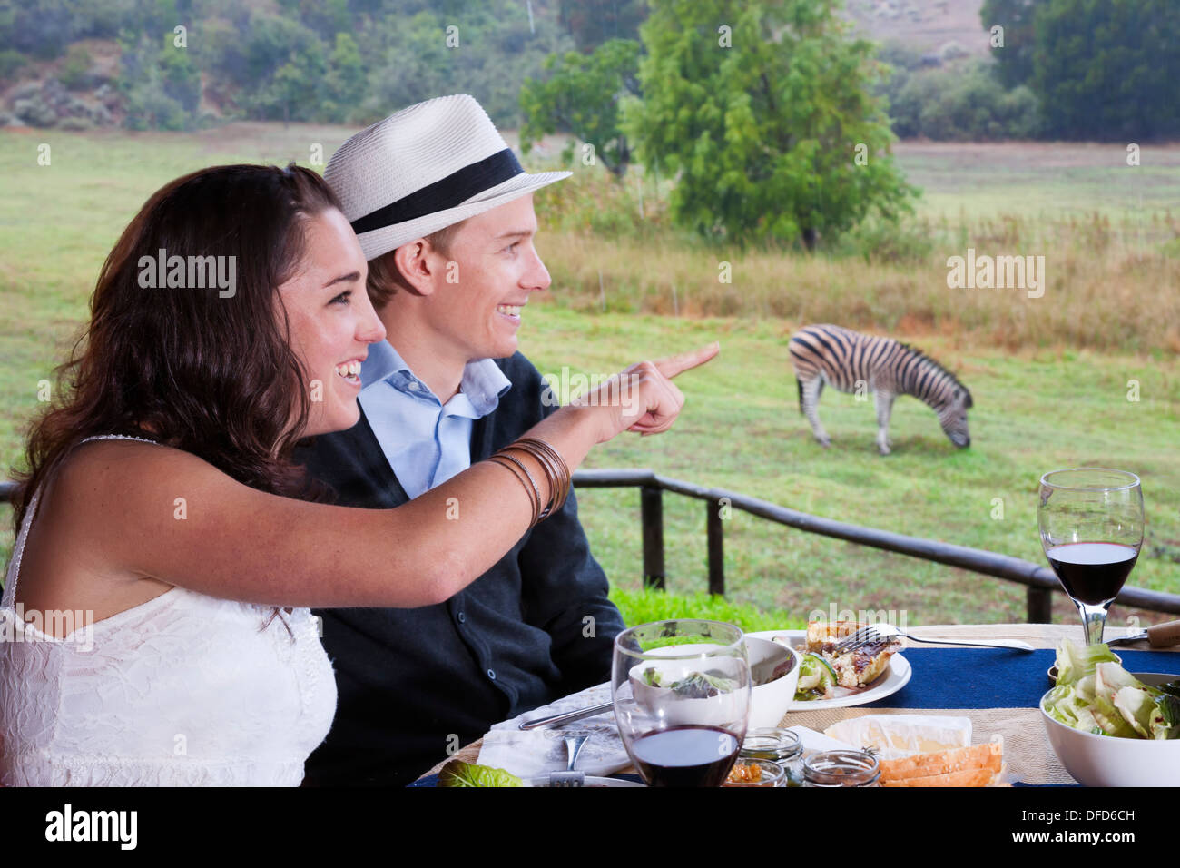 Honeymooning couple in late twenties eating picnic lunch outdoors with zebras in background, Winelands, South Africa - Stock Image