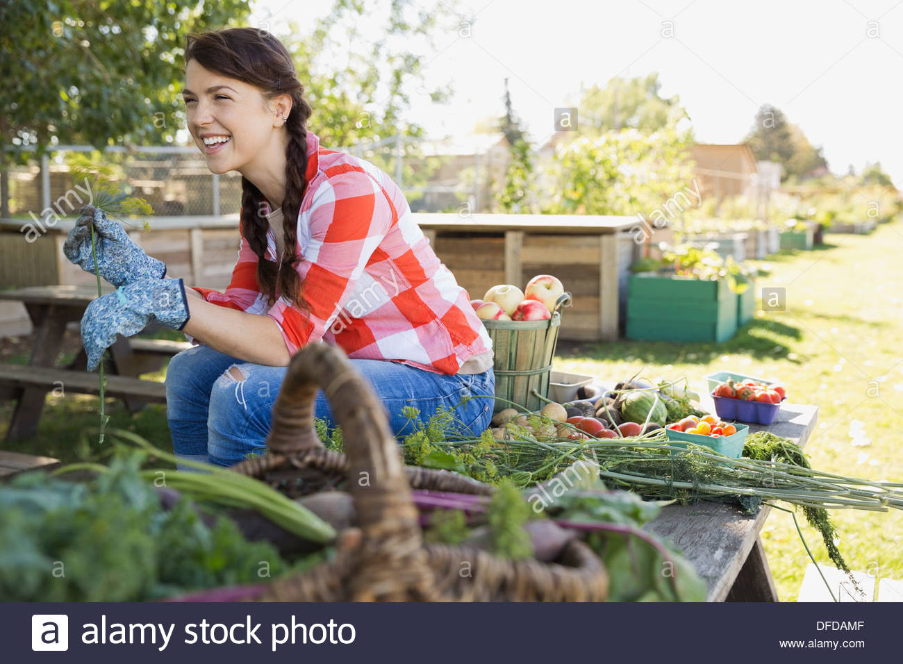 Cheerful woman sitting in community garden - Stock Image