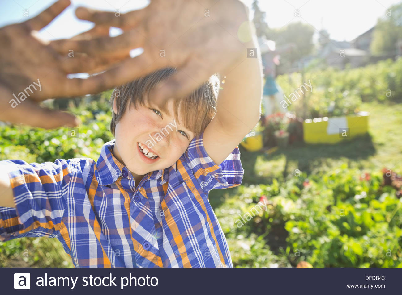 Boy with arms raised standing in community garden - Stock Image