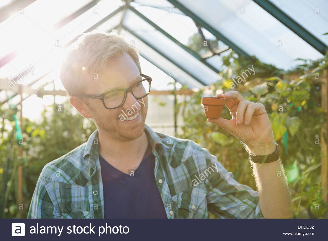 Smiling man holding tiny pot in community greenhouse - Stock Image