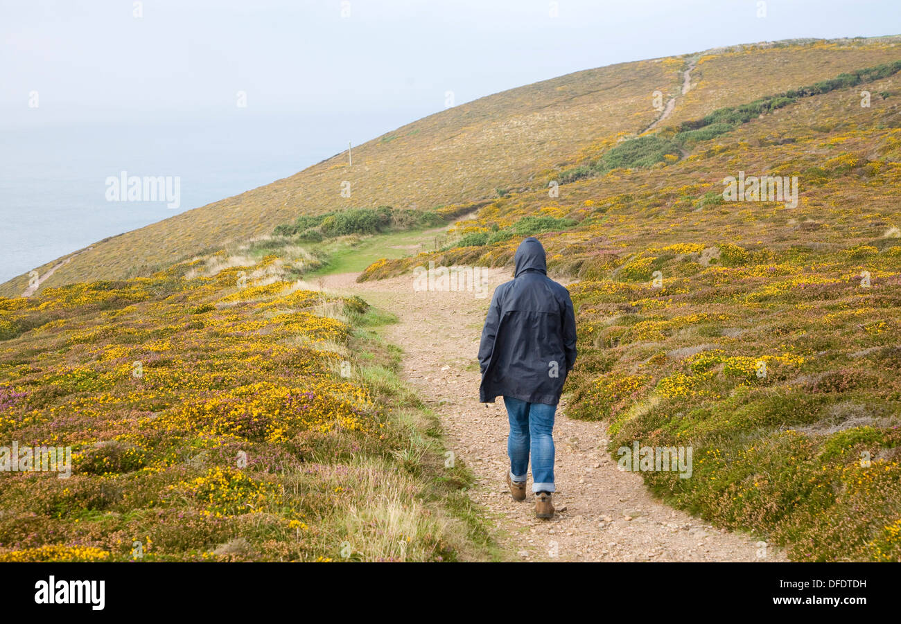 Woman wearing kagoule walking along the South West coast path at St Agnes head, Cornwall, England - Stock Image