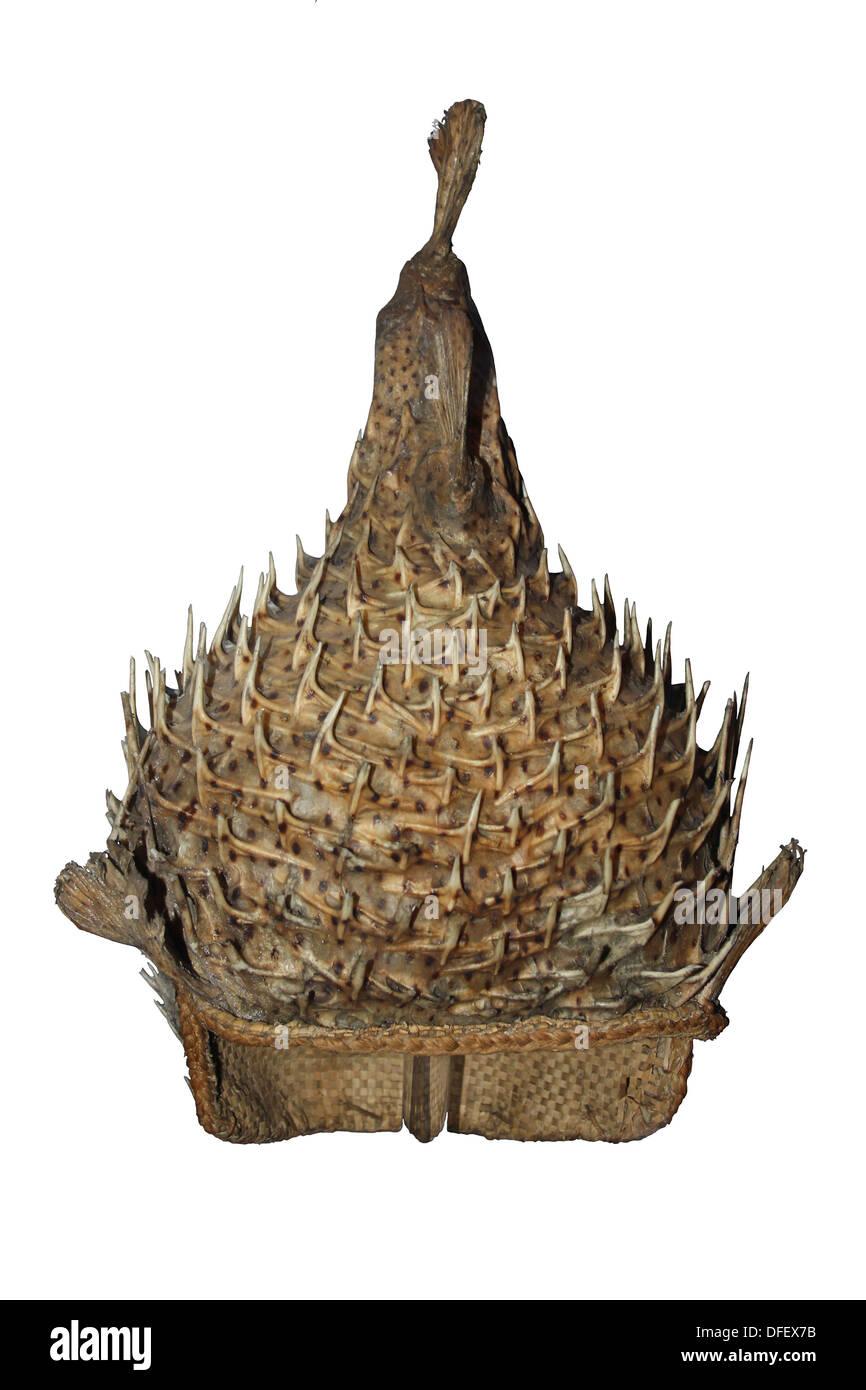Porcupine Fish Helmet, Pacific, Oceania, Kiribati - Stock Image