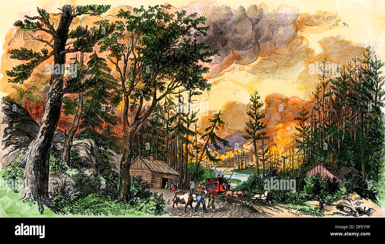 Family fleeing a forest fire in the Maine woods, 1850s. Hand-colored woodcut - Stock Image