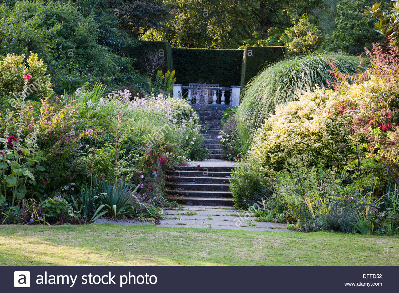 Garden stone steps stock photos garden stone steps stock images stone steps leading to balustraded platform through mixed late summer planting garden great comp workwithnaturefo