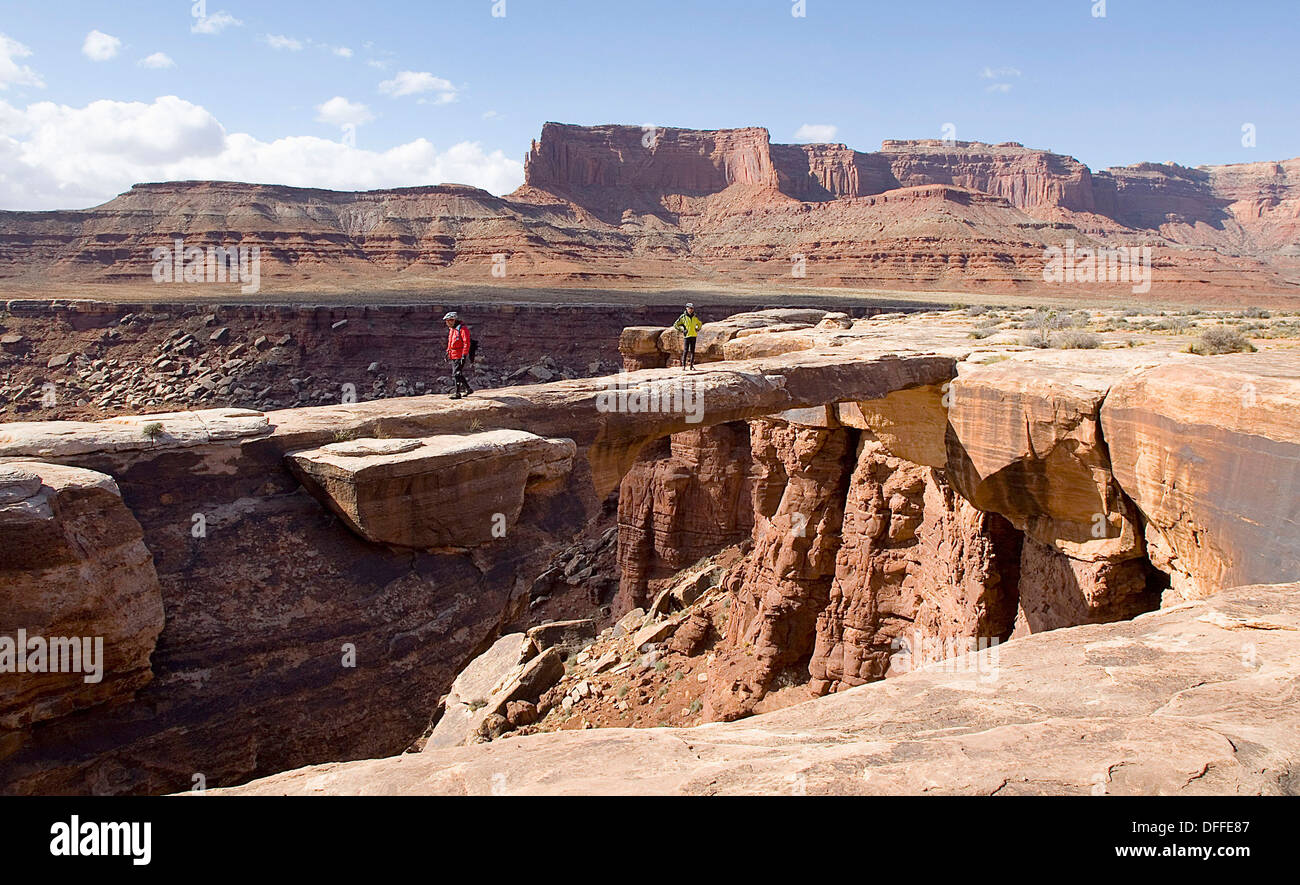 Two hikers wander onto the flat Musselman Arch along the White Rim Road canyonlands national Park, Utah Stock Photo