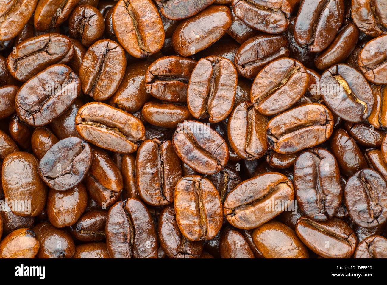 roasted coffee beans arabica - Stock Image