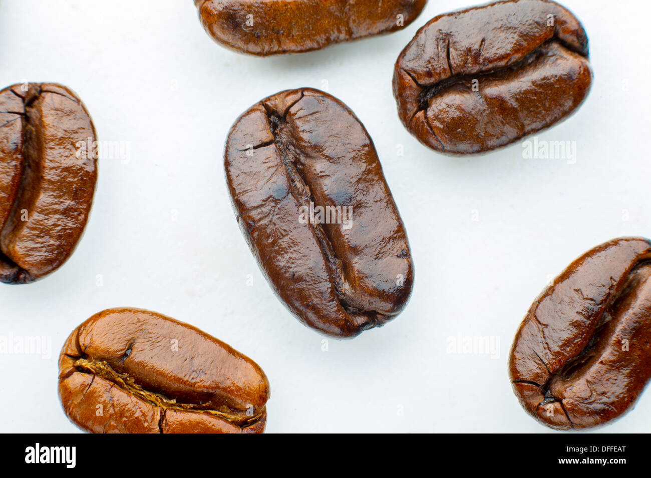 roasted coffee beans arabica in white background - Stock Image