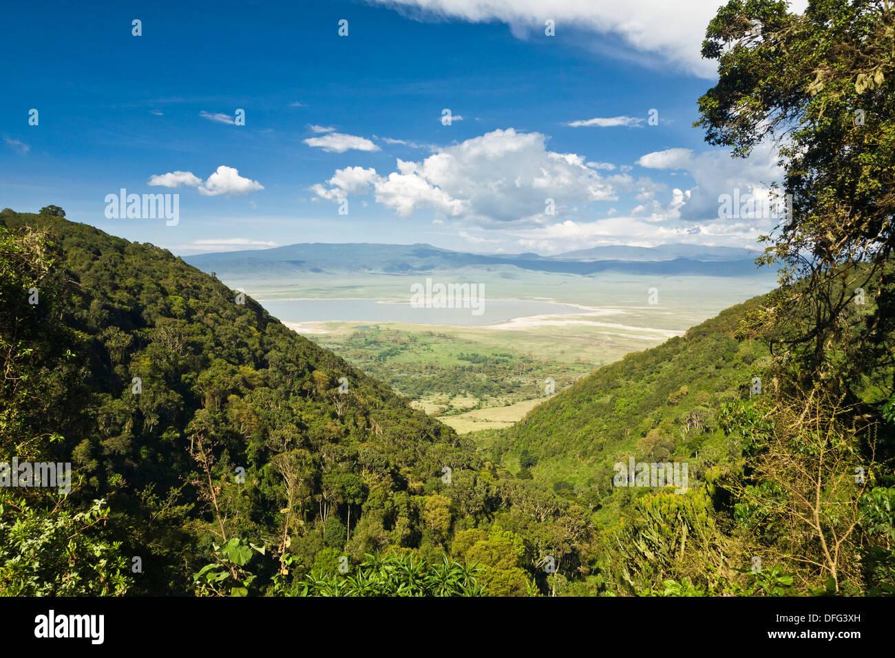 Bird´s-eye view of the Ngorongoro Crater in Tansania, Africa - Stock Image