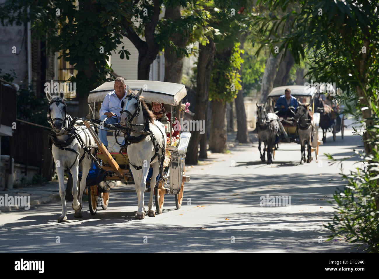 Horse-drawn carriages, Büyükada, Prince Islands, Istanbul, Asian side, Istanbul Province, Turkey - Stock Image