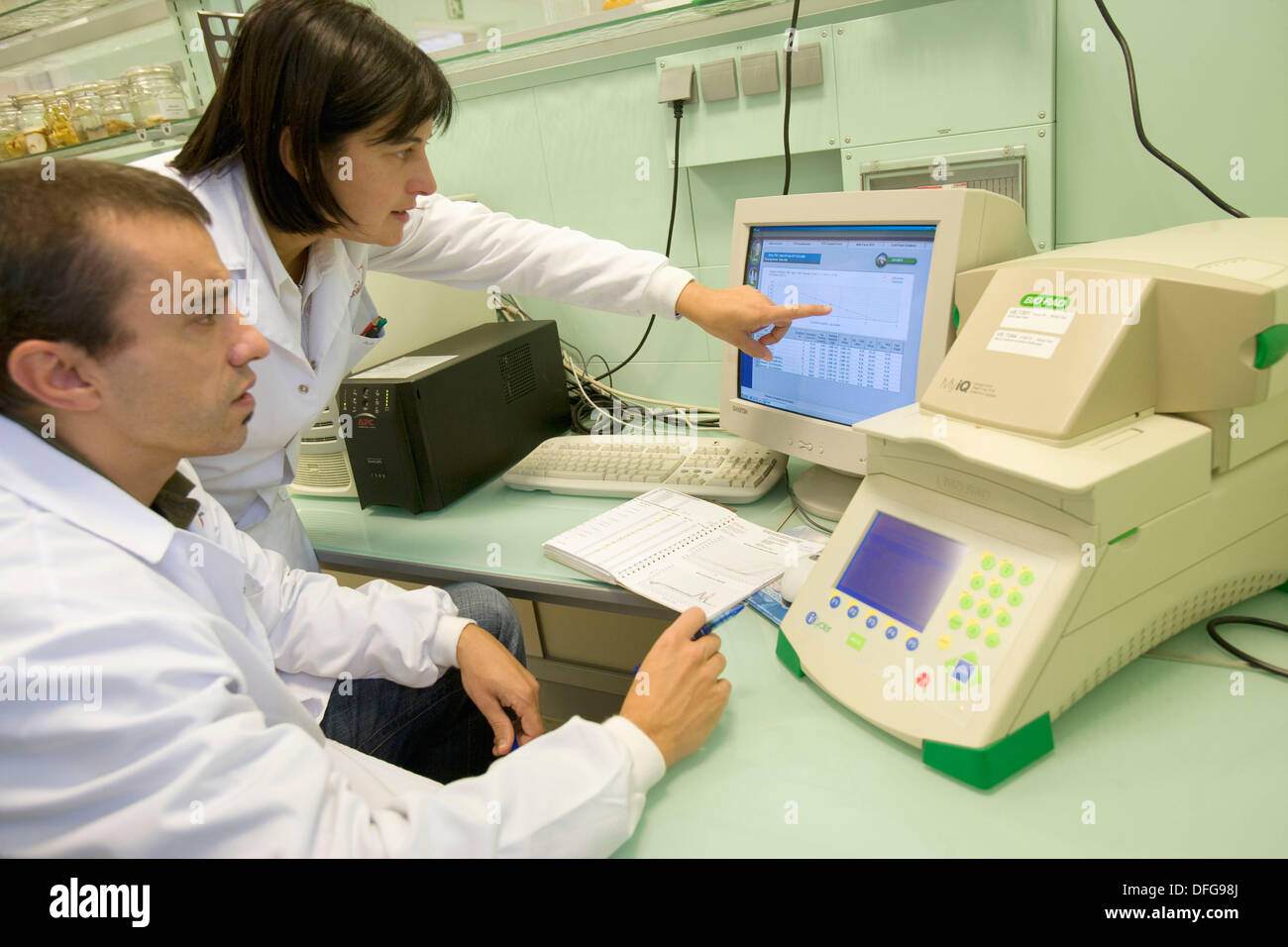 Quantification of Genetically Modified Organisms (GMOs). PCR-RT, DNA analysis, Neiker Tecnalia, Instituto de Investigación y - Stock Image
