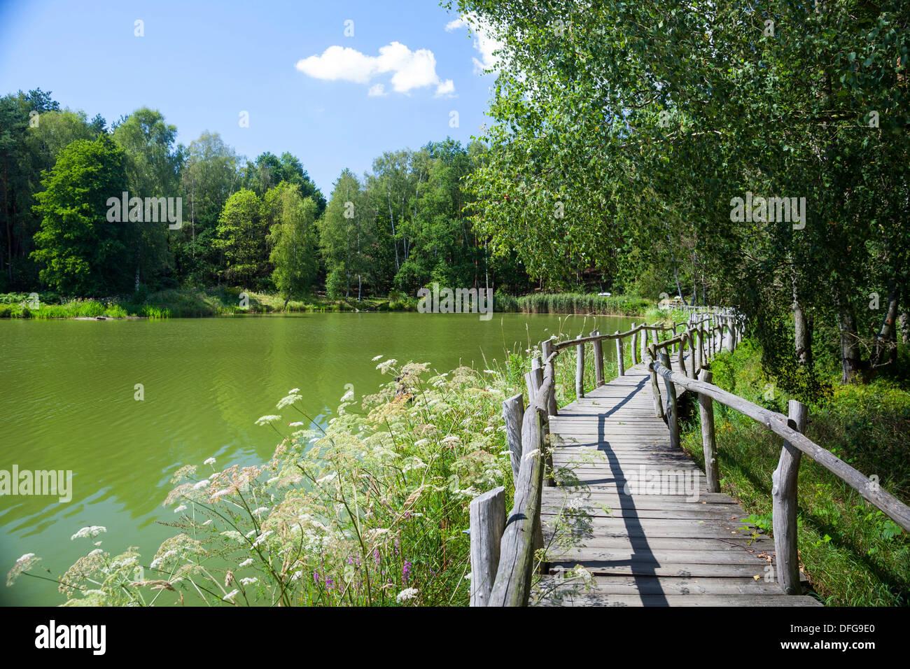 Beaver Trail, wooden bridge on See der Freundschaft or Lake of Friendship, Königsbrücker Heide nature reserve, Saxony, Germany - Stock Image